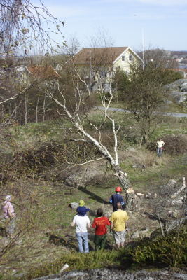 20070415_5